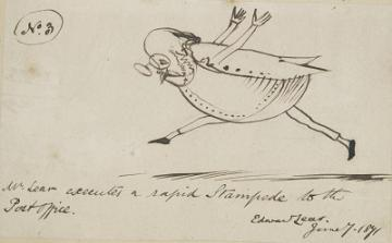 Edward Lear illustration