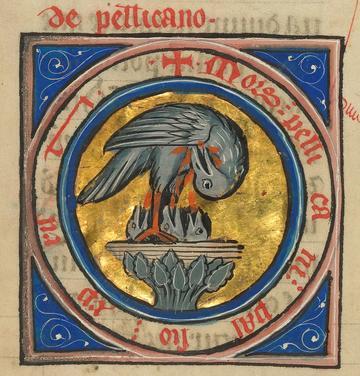 nml pelican getty ms ludwig xv