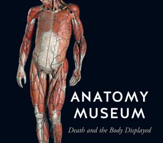 Anatomy Museum